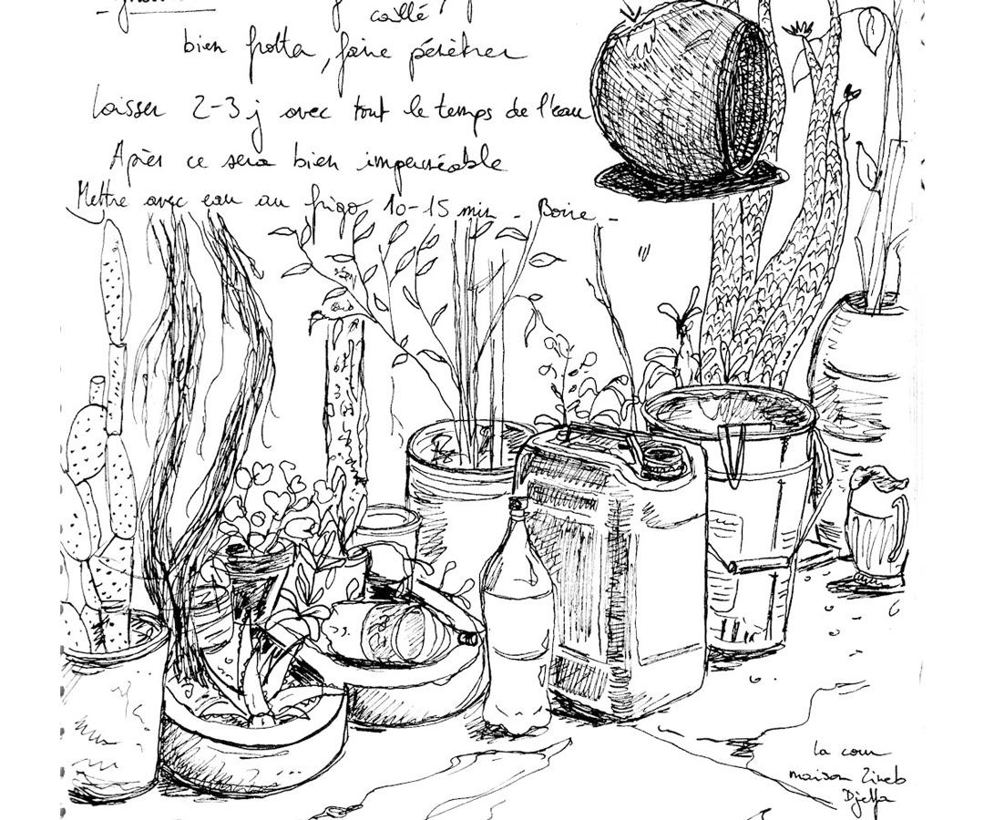 LUTOPIQUANT_croquis_Algerie_cours