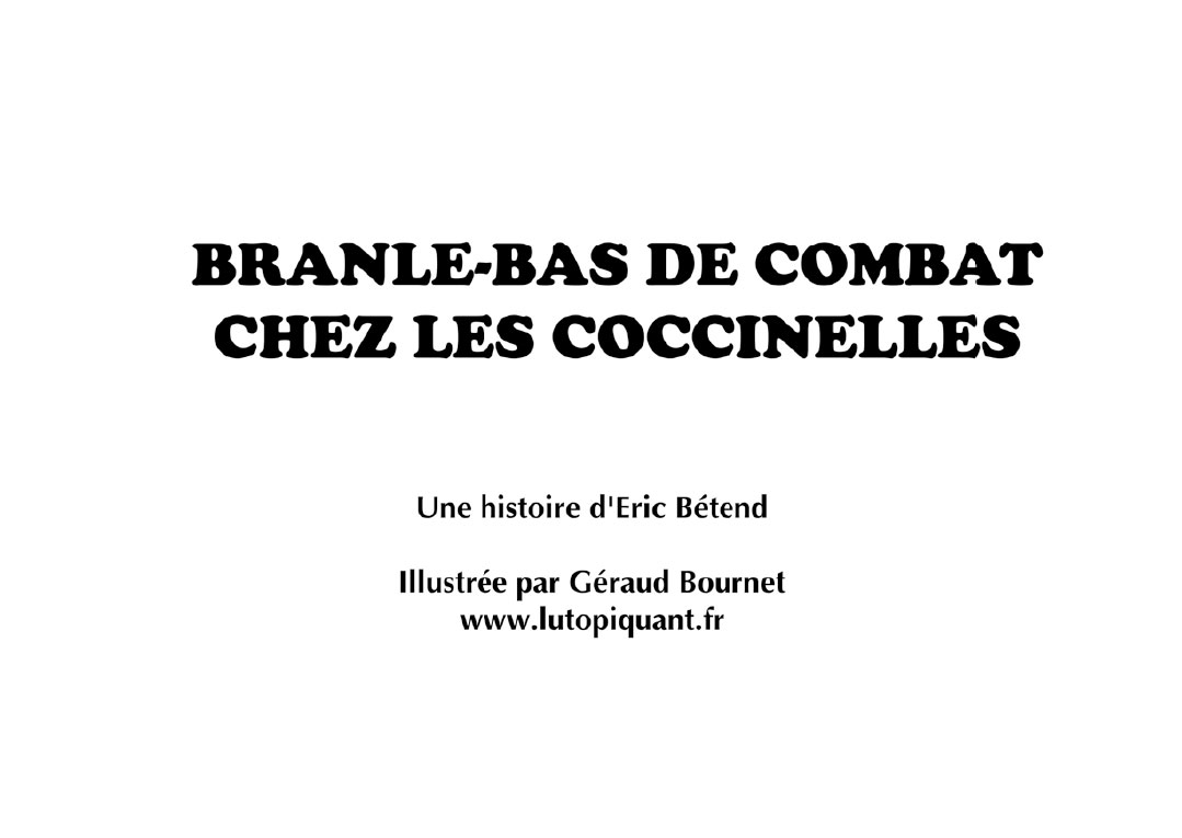 brane_bas_de_combat-3